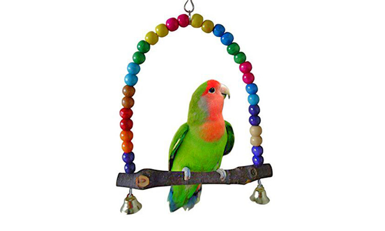 Bird Toys Do's & Dont's
